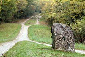 Acqueduc de la Dhuis à Villevaude - Crédit Photo: Gagny-Abbesses