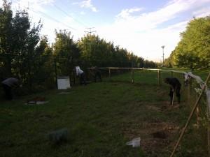 Plantations rucher