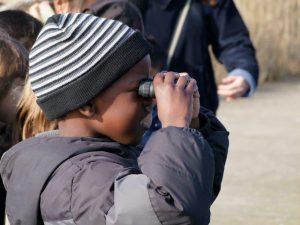 Jumelles - Observation oiseaux
