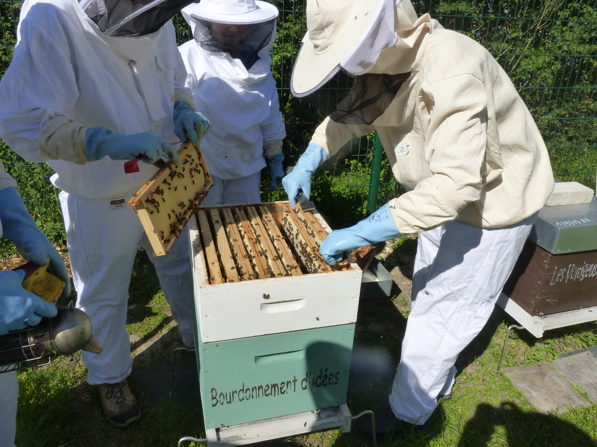 Rejoindre le groupe apiculture 2019