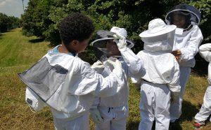 Nichoir à idées : Butiner l'été @ Maison de la Nature-Ile de Loisirs