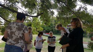 Histoires d'arbres @ Maison de la Nature- Ile de Loisirs | Créteil | Île-de-France | France
