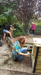Soirée de lancement des chantiers bénévoles @ Maison de la Nature | Créteil | Île-de-France | France