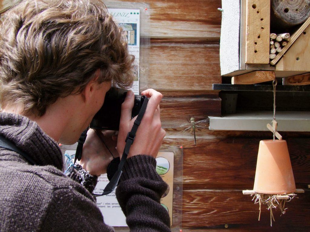 Abri à insectes Maison de la Nature